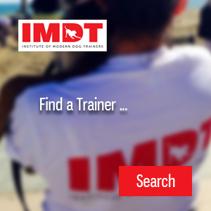 Find a Qualified IMDT Trainer