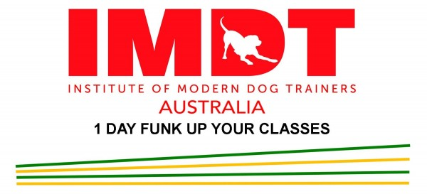 IMDT 1 DAY FUNK UP YOUR CLASSES