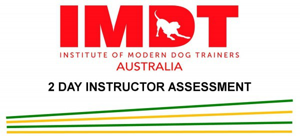 IMDT MEMBERSHIP ASSESSMENT