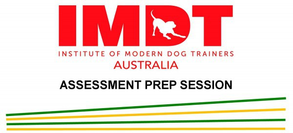 IMDT ASSESSMENT PREP SESSION