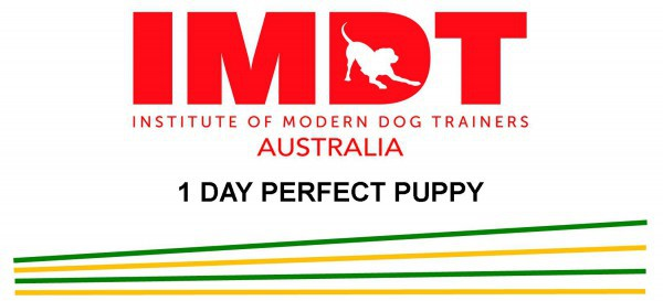 IMDT 1 DAY PERFECT PUPPY