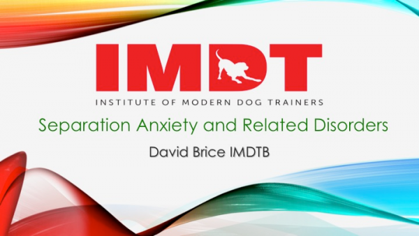 Webinar: Separation Distress/Anxiety and Related Disorders